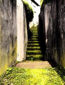 "Photo Art ""Green Stairway"" Gialombardo 2013"